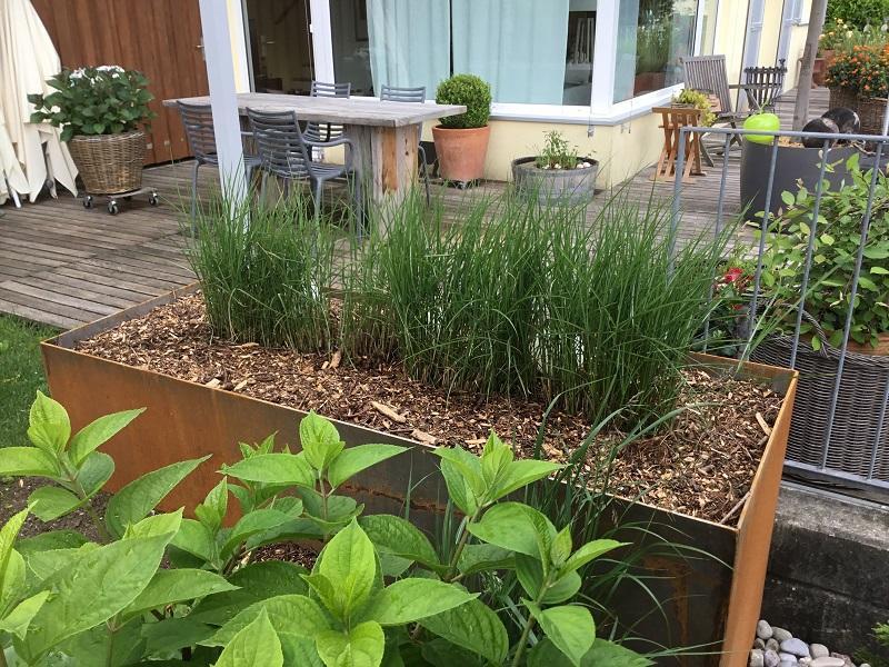 moser gartengestaltung, ihr partner für den gesamten gartenbereich ... - Gartengestaltung Sichtschutz Stahl